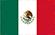 Bizplin México